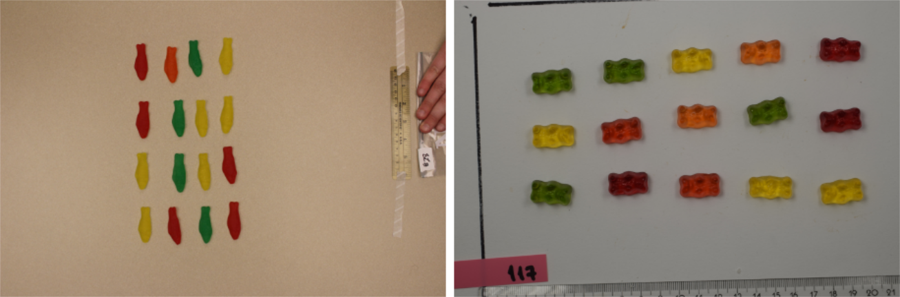 Pictures of candies taken during the course by Dan Chitwood's students (left) and our students (right).